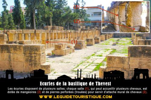 Ecuries de la basilique de Thevest