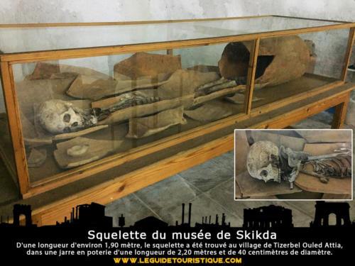 Squelette du musée de Skikda
