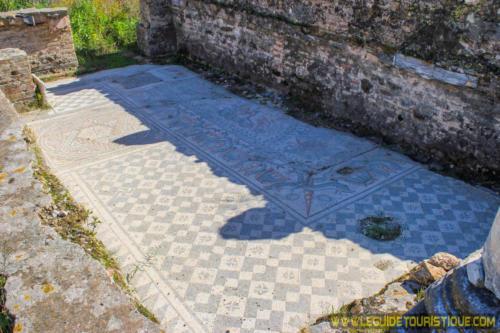 Une mosaïque au cartier des villas d'Hippone