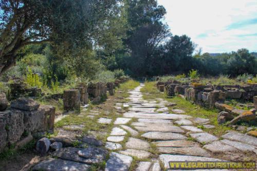 Route à Hippone