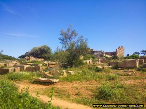 Nécropole de Tipaza